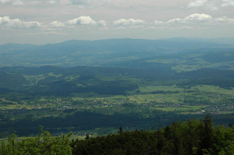 Babia Góra (11)